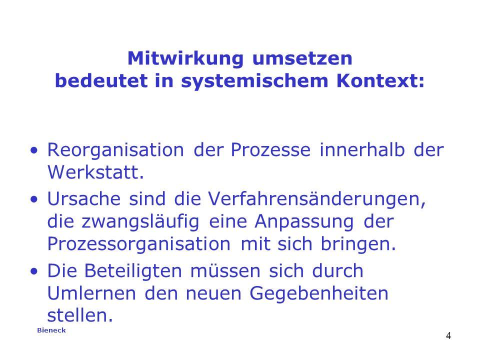 Bieneck 4 Reorganisation der Prozesse innerhalb der Werkstatt.