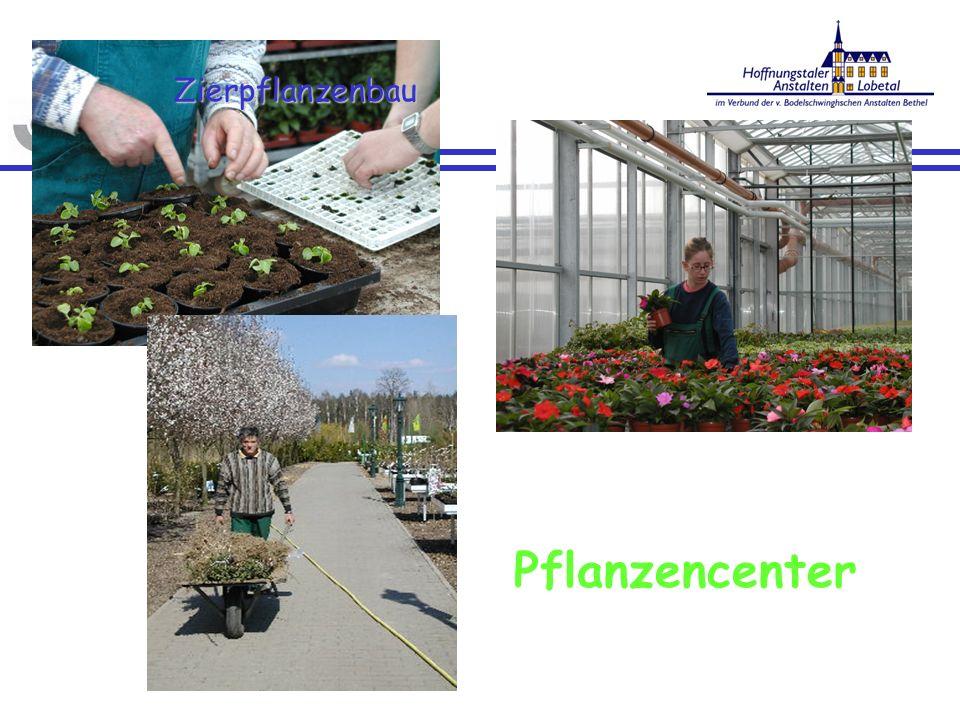 Zierpflanzenbau Pflanzencenter