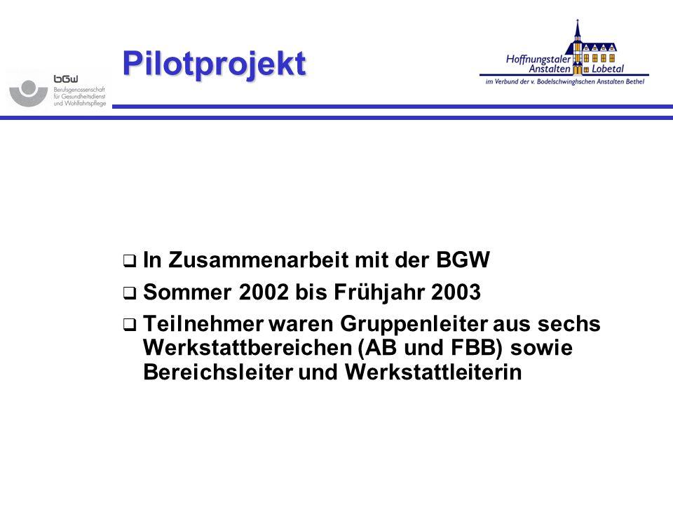 Pilotprojekt In Zusammenarbeit mit der BGW Sommer 2002 bis Frühjahr 2003 Teilnehmer waren Gruppenleiter aus sechs Werkstattbereichen (AB und FBB) sowi