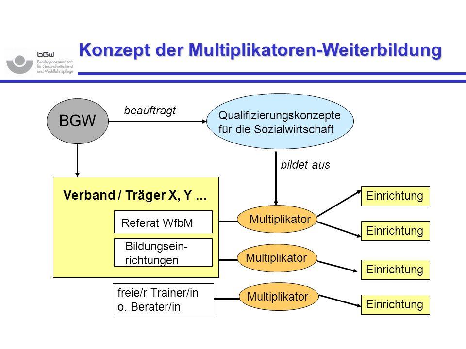 Referat WfbM Bildungsein- richtungen Multiplikator Einrichtung BGW Verband / Träger X, Y... Qualifizierungskonzepte für die Sozialwirtschaft beauftrag