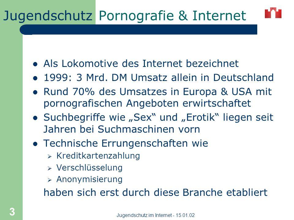 Jugendschutz Jugendschutz im Internet - 15.01.02 3 Pornografie & Internet Als Lokomotive des Internet bezeichnet 1999: 3 Mrd.