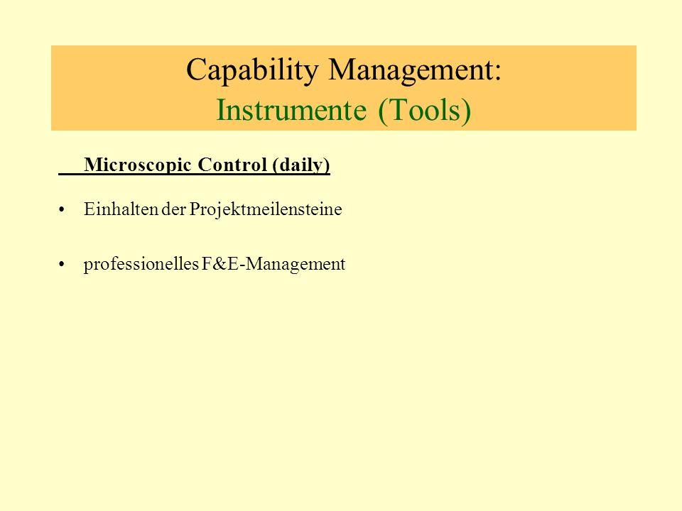 Capability Management: Instrumente (Tools) Microscopic Control (daily) Einhalten der Projektmeilensteine professionelles F&E-Management