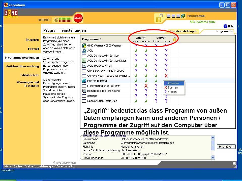 Zugriff bedeutet das dass Programm von außen Daten empfangen kann und anderen Personen / Programme der Zugriff auf den Computer über diese Programme m