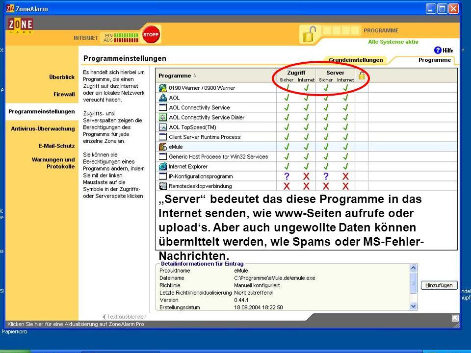 Server bedeutet das diese Programme in das Internet senden, wie www-Seiten aufrufe oder uploads. Aber auch ungewollte Daten können übermittelt werden,