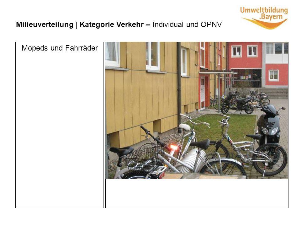 Milieuverteilung | Kategorie Verkehr – Individual und ÖPNV Mopeds und Fahrräder