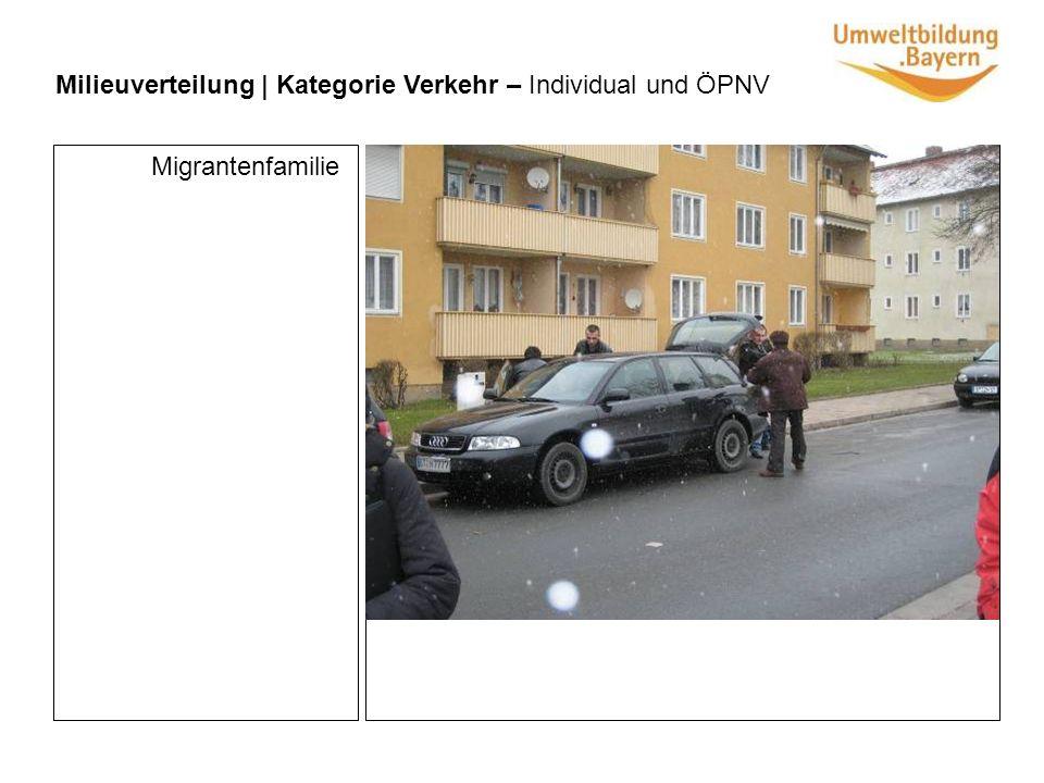 Milieuverteilung | Kategorie Verkehr – Individual und ÖPNV Migrantenfamilie