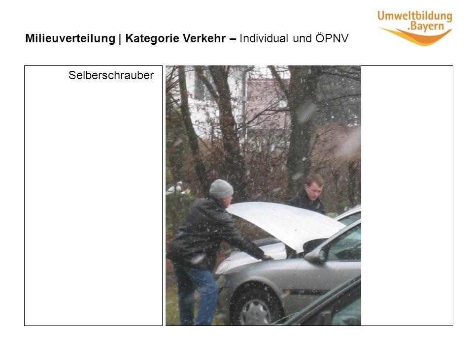 Milieuverteilung | Kategorie Verkehr – Individual und ÖPNV Selberschrauber