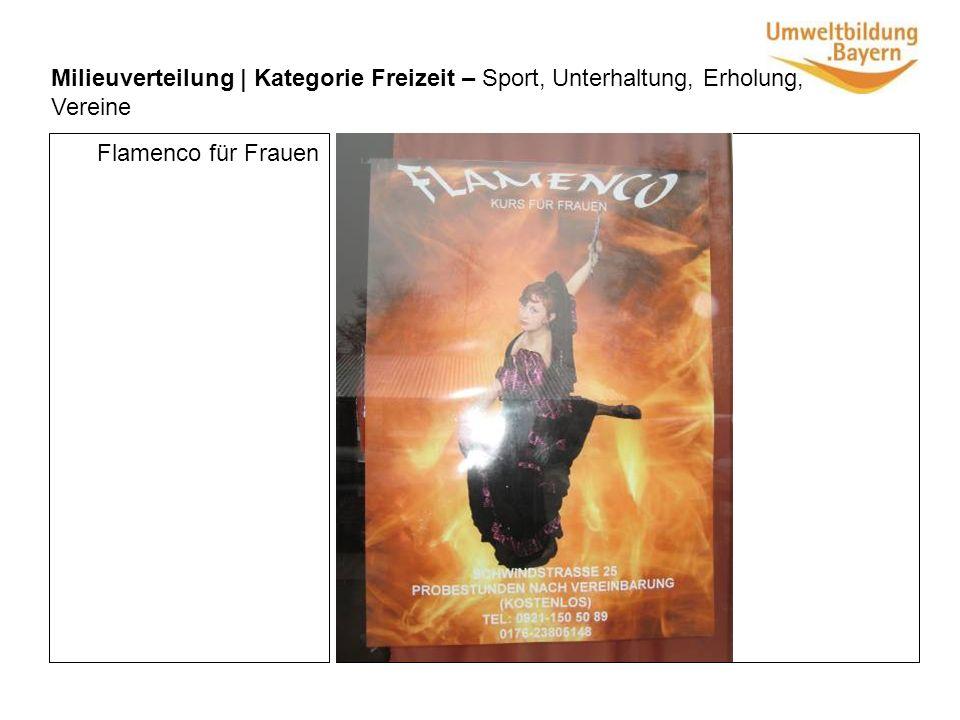 Milieuverteilung | Kategorie Freizeit – Sport, Unterhaltung, Erholung, Vereine Flamenco für Frauen