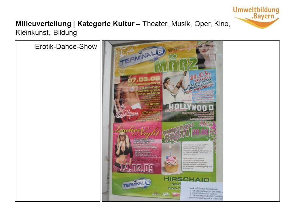 Milieuverteilung | Kategorie Kultur – Theater, Musik, Oper, Kino, Kleinkunst, Bildung Erotik-Dance-Show