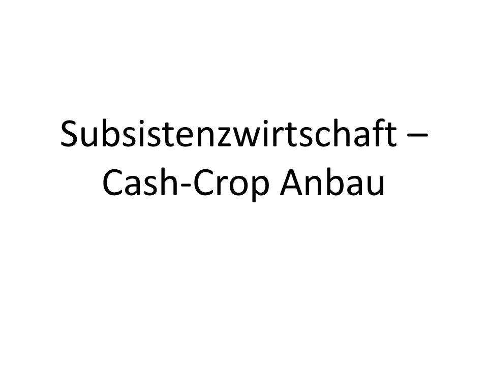 Subsistenzwirtschaft – Cash-Crop Anbau
