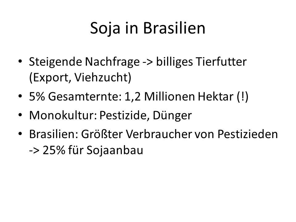 Soja in Brasilien Steigende Nachfrage -> billiges Tierfutter (Export, Viehzucht) 5% Gesamternte: 1,2 Millionen Hektar (!) Monokultur: Pestizide, Dünge