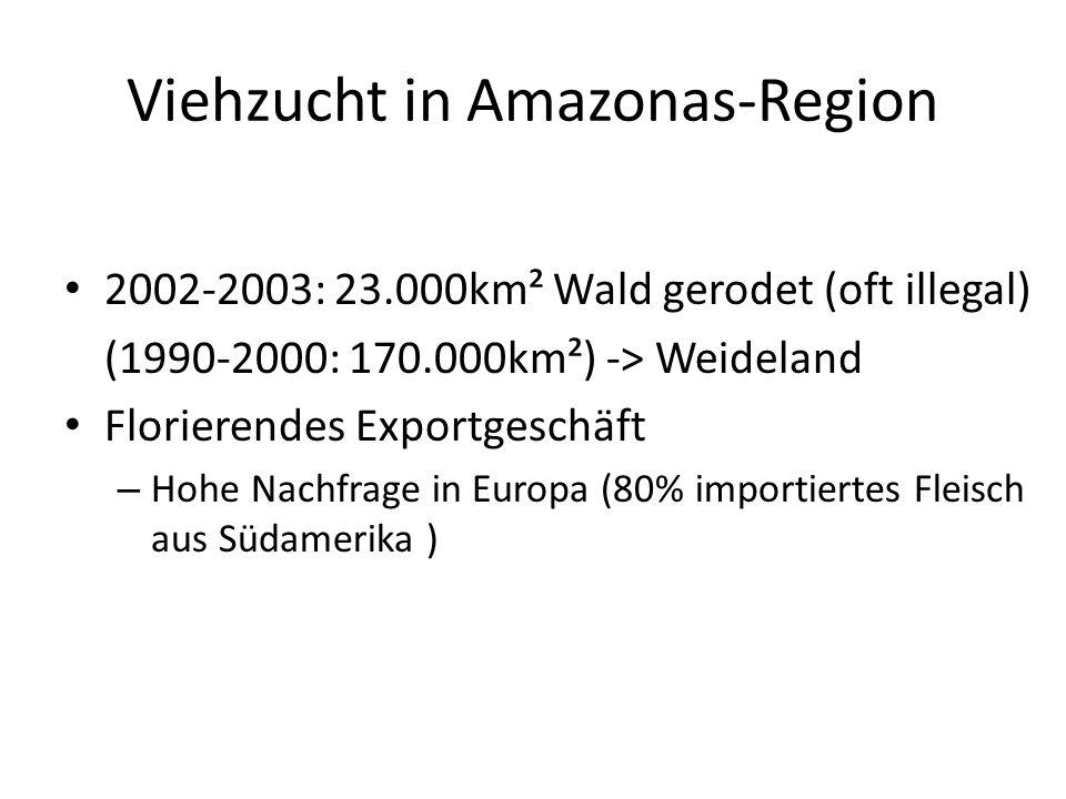 Viehzucht in Amazonas-Region 2002-2003: 23.000km² Wald gerodet (oft illegal) (1990-2000: 170.000km²) -> Weideland Florierendes Exportgeschäft – Hohe N