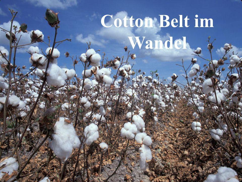 Cotton Belt im Wandel