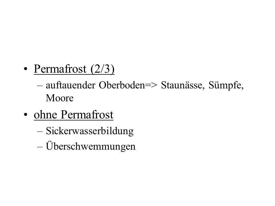 Permafrost (2/3) –auftauender Oberboden=> Staunässe, Sümpfe, Moore ohne Permafrost –Sickerwasserbildung –Überschwemmungen