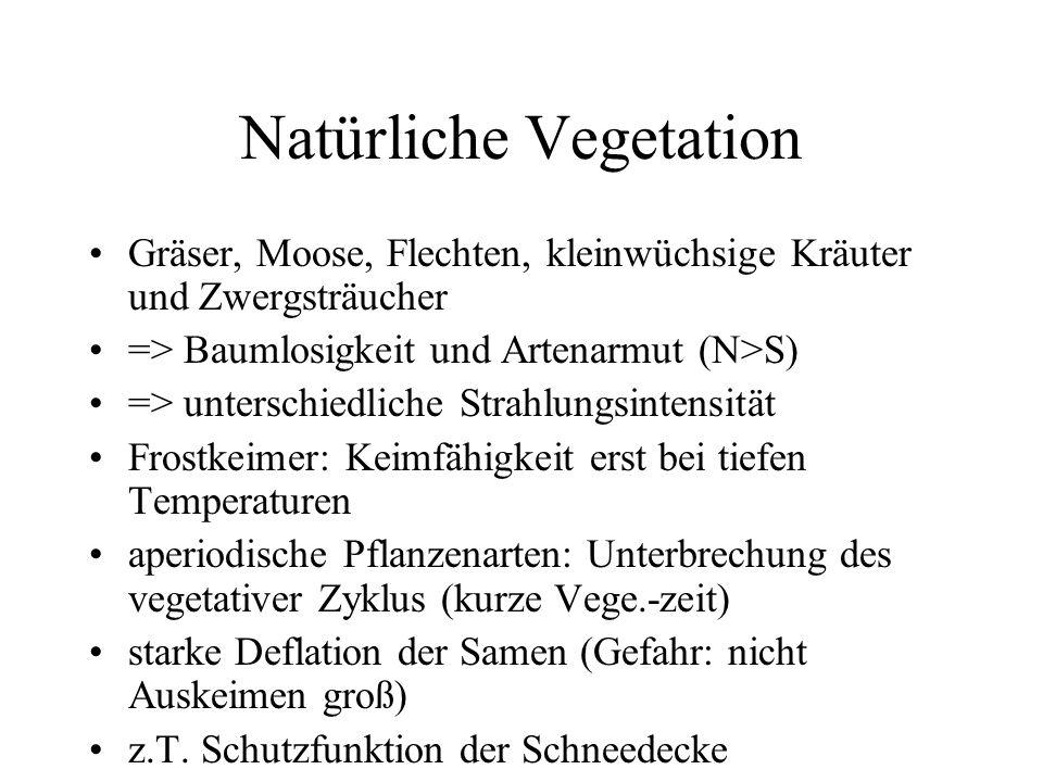 Natürliche Vegetation Gräser, Moose, Flechten, kleinwüchsige Kräuter und Zwergsträucher => Baumlosigkeit und Artenarmut (N>S) => unterschiedliche Stra