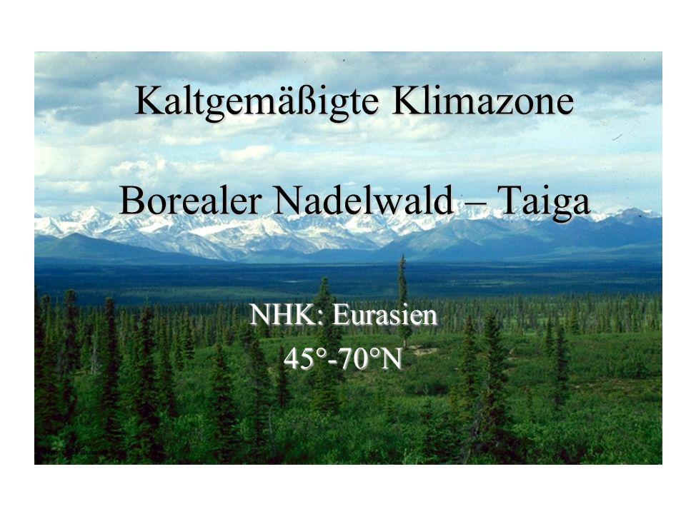 Kaltgemäßigte Klimazone Borealer Nadelwald – Taiga NHK: Eurasien 45°-70°N