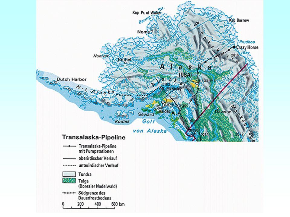 Sibirien Umweltverschmutzung zählt hier zur Tagesordnung allein in der westsibirischen Ölförderregion treten jährlich bis zu 5000 Brüche von Ölpipelines auf auslaufendes Öl verseucht Böden und Gewässer riesige Ölseen zerstören den Lebensraum von Menschen, Tieren und Pflanzen