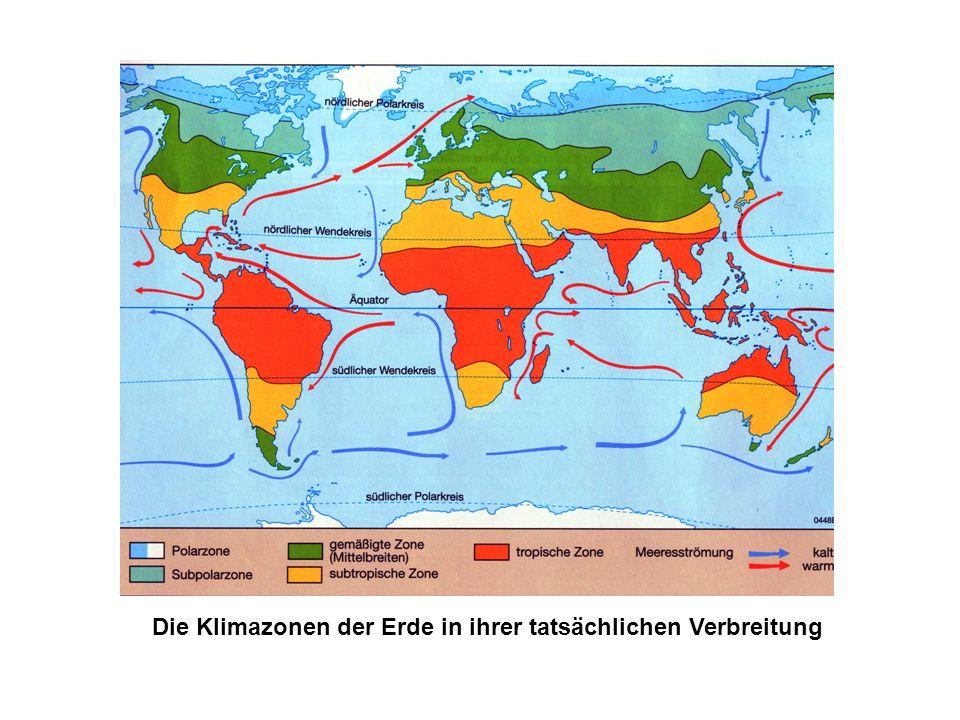 4 Klimazonen: Kalte Zone: um und unter 0°C - Polare Zone - Subpolare Zone Gemäßigte Zone: um 8°C Subtropische Zone: um 18°C Tropische Zone:um 25°C