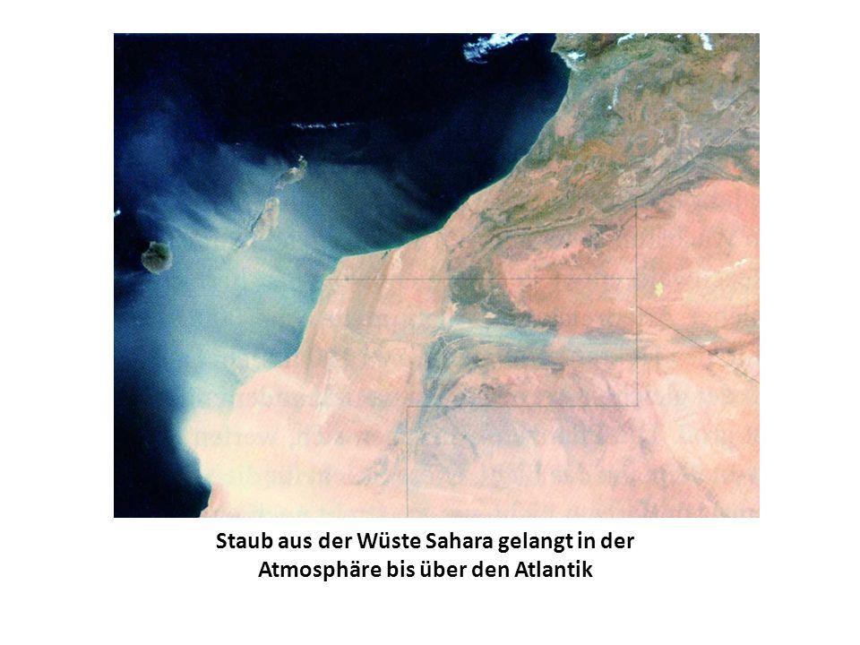 Der Golfstrom als warme Meeresströmung