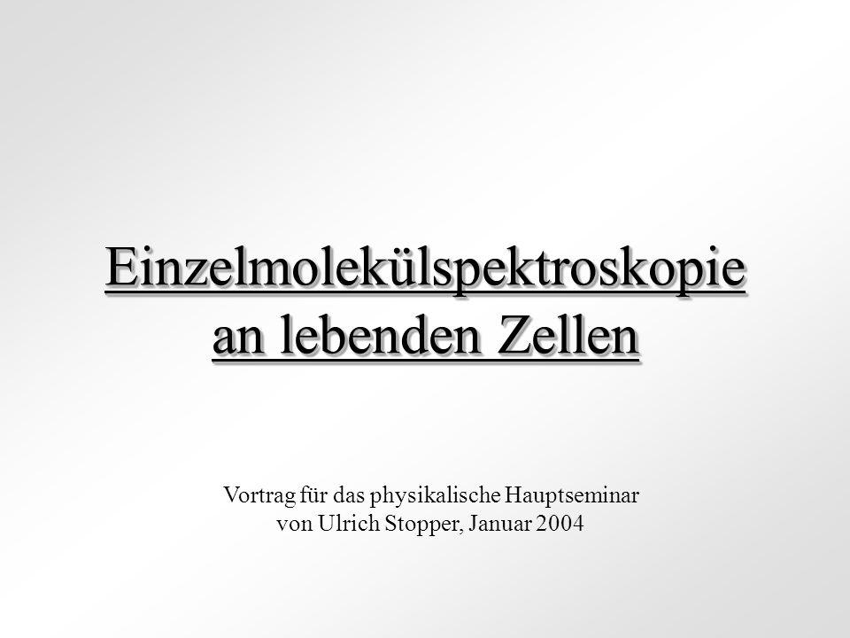 Einzelmolekülspektroskopie an lebenden Zellen Vortrag für das physikalische Hauptseminar von Ulrich Stopper, Januar 2004