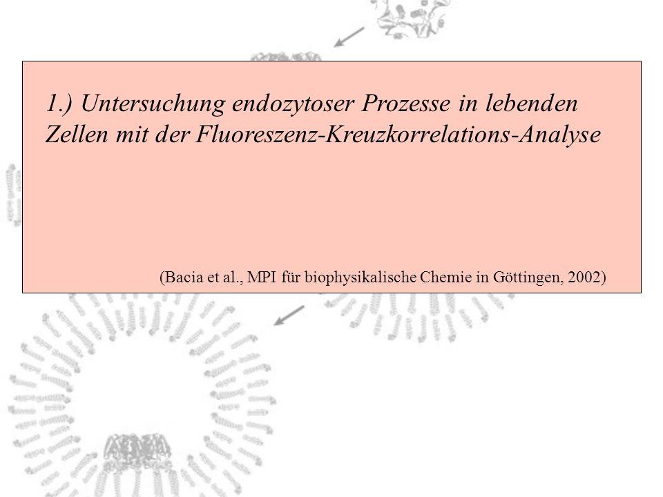 1.) Untersuchung endozytoser Prozesse in lebenden Zellen mit der Fluoreszenz-Kreuzkorrelations-Analyse (Bacia et al., MPI für biophysikalische Chemie