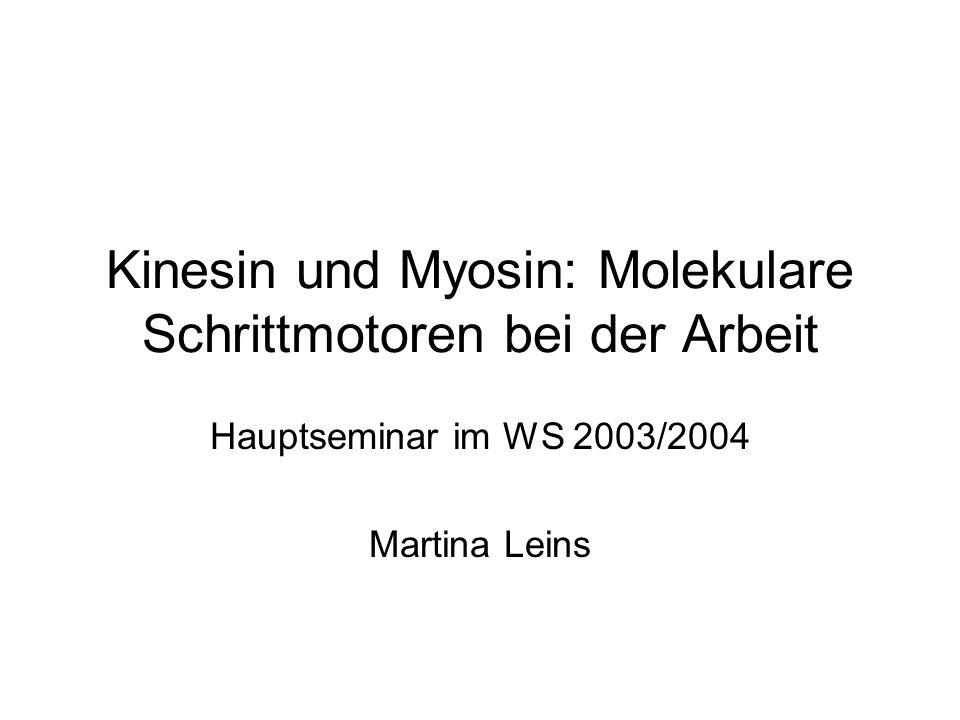 Ergebnis Myosin V bewegt sich nach dem Hand- over-hand Modell Mittlere Schrittweite: (74 + 0, 52 + 23, 42 + 33)/2 nm = 37nm