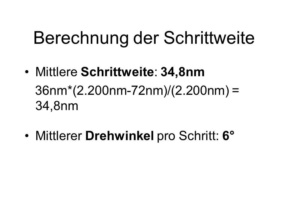 Berechnung der Schrittweite Mittlere Schrittweite: 34,8nm 36nm*(2.200nm-72nm)/(2.200nm) = 34,8nm Mittlerer Drehwinkel pro Schritt: 6°