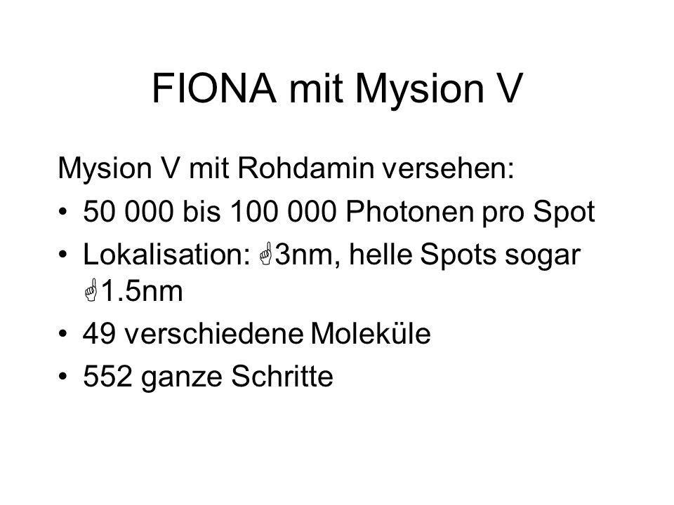 FIONA mit Mysion V Mysion V mit Rohdamin versehen: 50 000 bis 100 000 Photonen pro Spot Lokalisation: G3nm, helle Spots sogar G1.5nm 49 verschiedene M