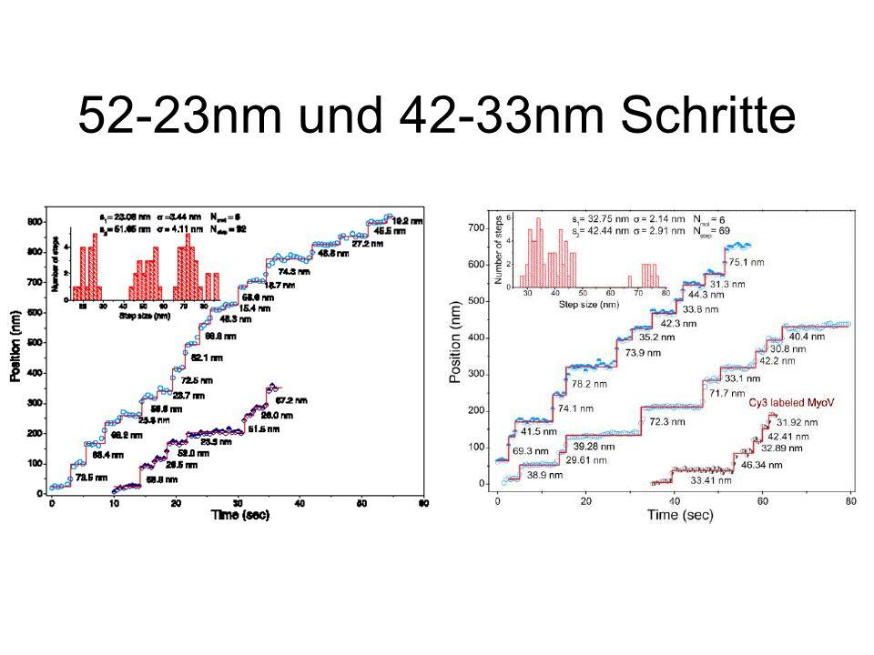 52-23nm und 42-33nm Schritte
