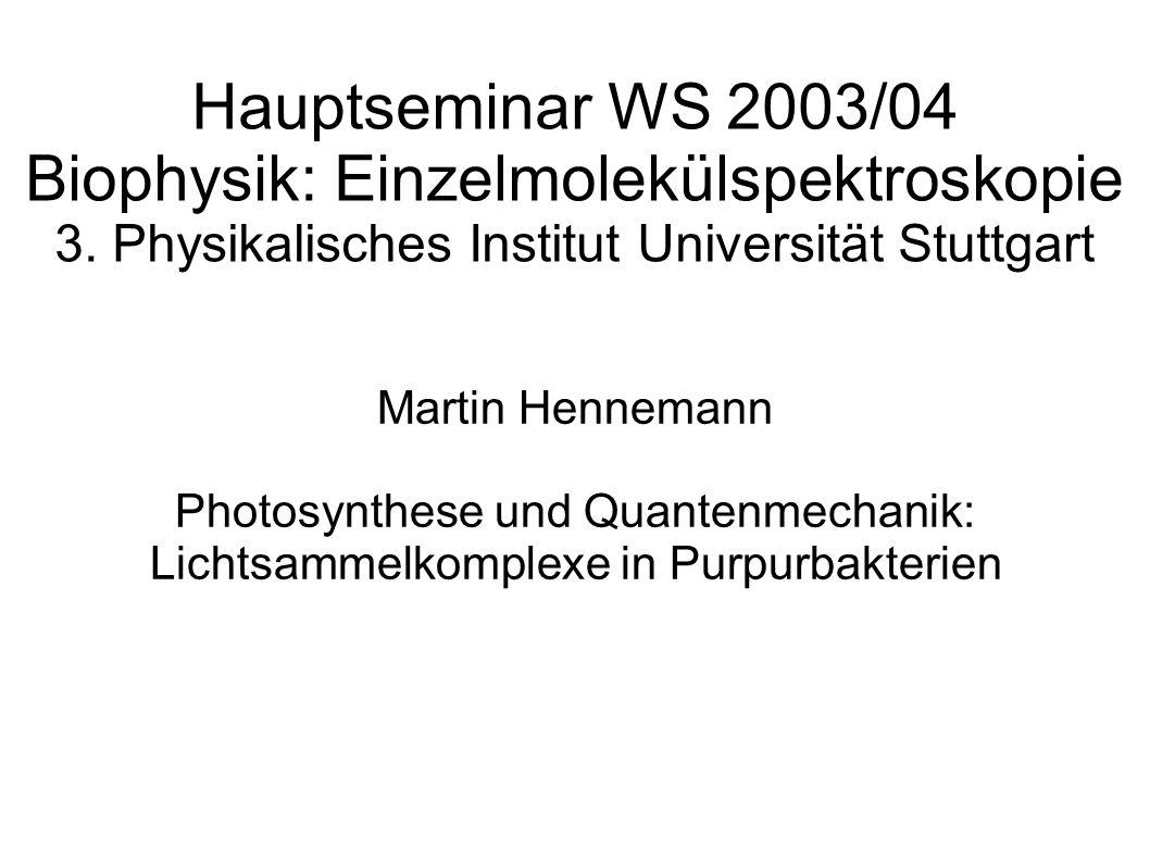 Hauptseminar WS 2003/04 Biophysik: Einzelmolekülspektroskopie 3. Physikalisches Institut Universität Stuttgart Martin Hennemann Photosynthese und Quan