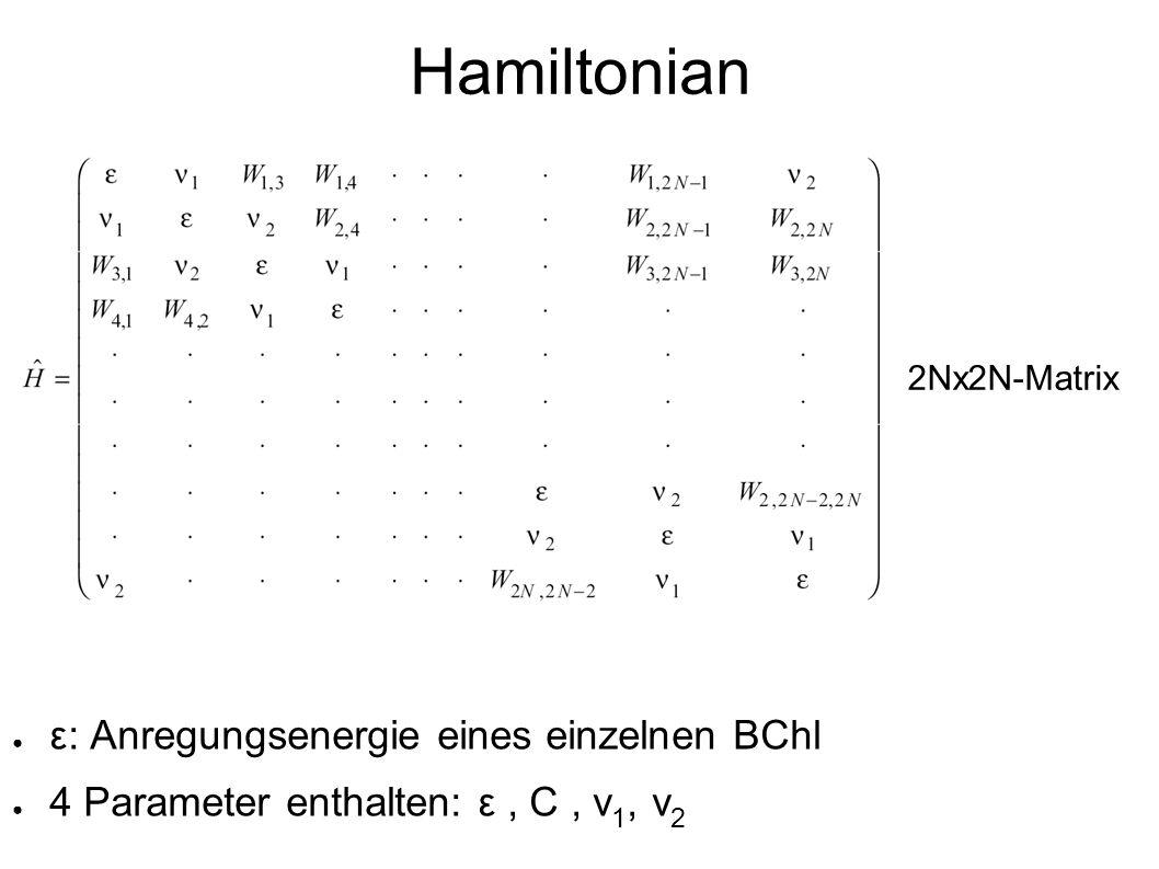 Hamiltonian ε: Anregungsenergie eines einzelnen BChl 4 Parameter enthalten: ε, C, v 1, v 2 2Nx2N-Matrix