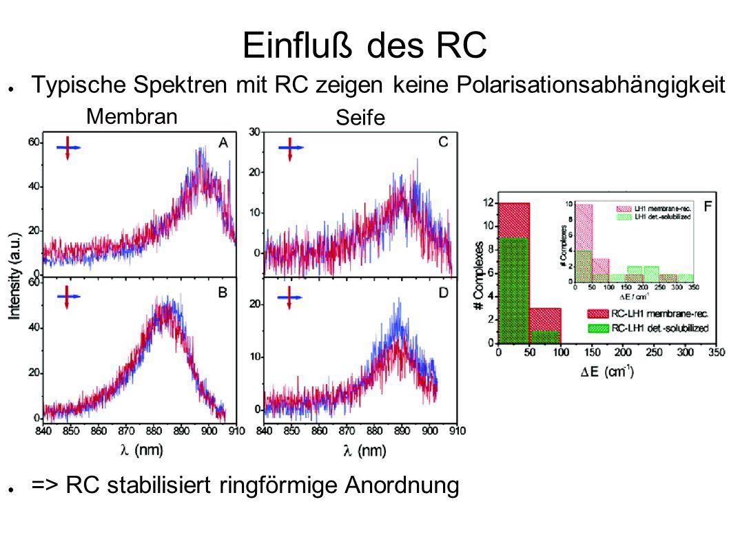 Einfluß des RC Typische Spektren mit RC zeigen keine Polarisationsabhängigkeit Membran Seife => RC stabilisiert ringförmige Anordnung