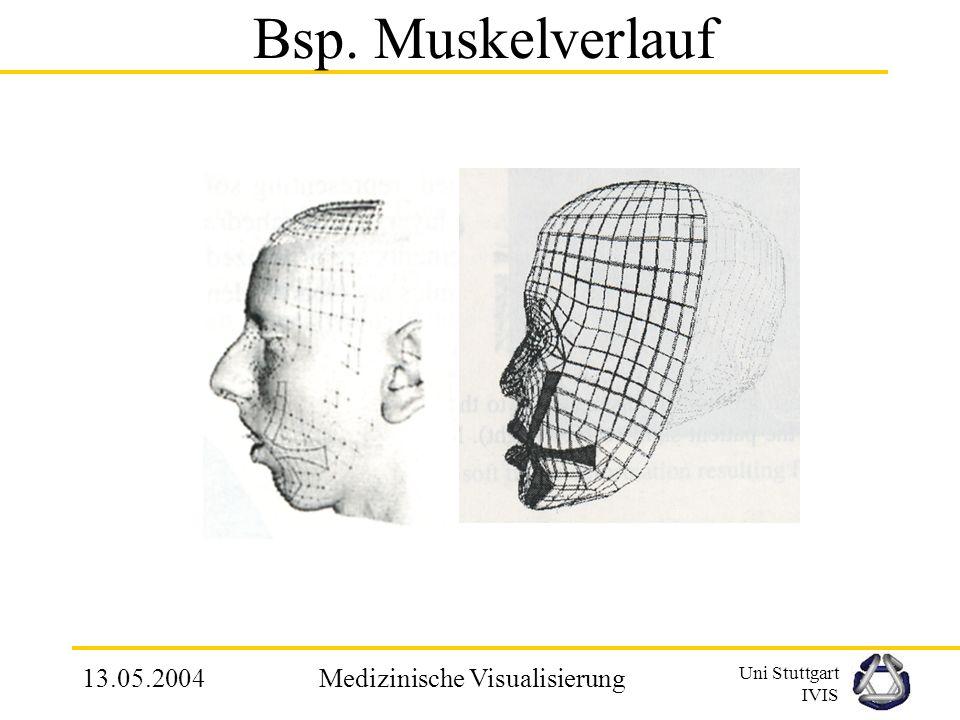 Uni Stuttgart IVIS 13.05.2004Medizinische Visualisierung 3.3 Mechanisches Verhalten und Grenzeigenschaften Mimik des Gesichts wird durch querverlaufen