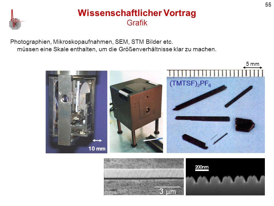 55 Wissenschaftlicher Vortrag Grafik Photographien, Mikroskopaufnahmen, SEM, STM Bilder etc. müssen eine Skale enthalten, um die Größenverhältnisse kl
