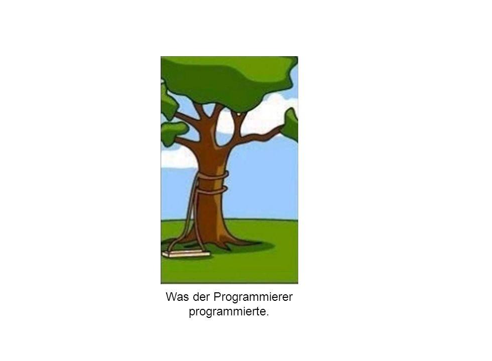 Institut für Grundlagen der Planung– Universität Stuttgart Institute for the Foundations of Planning – University of Stuttgart Was der Programmierer p