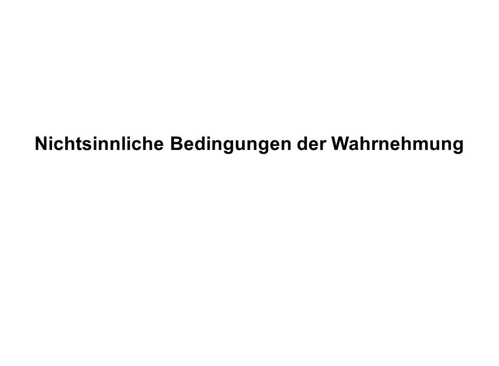 Institut für Grundlagen der Planung– Universität Stuttgart Institute for the Foundations of Planning – University of Stuttgart Nichtsinnliche Bedingungen der Wahrnehmung