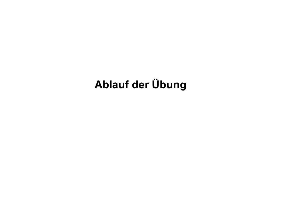 Institut für Grundlagen der Planung– Universität Stuttgart Institute for the Foundations of Planning – University of Stuttgart Ablauf der Übung