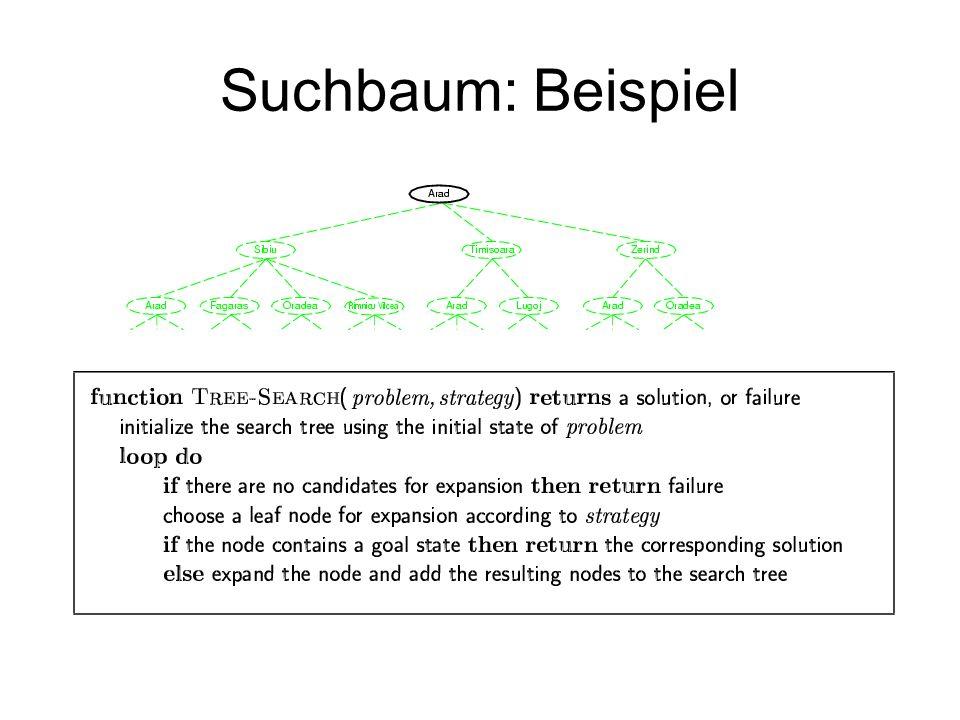 Suchbaum: Beispiel