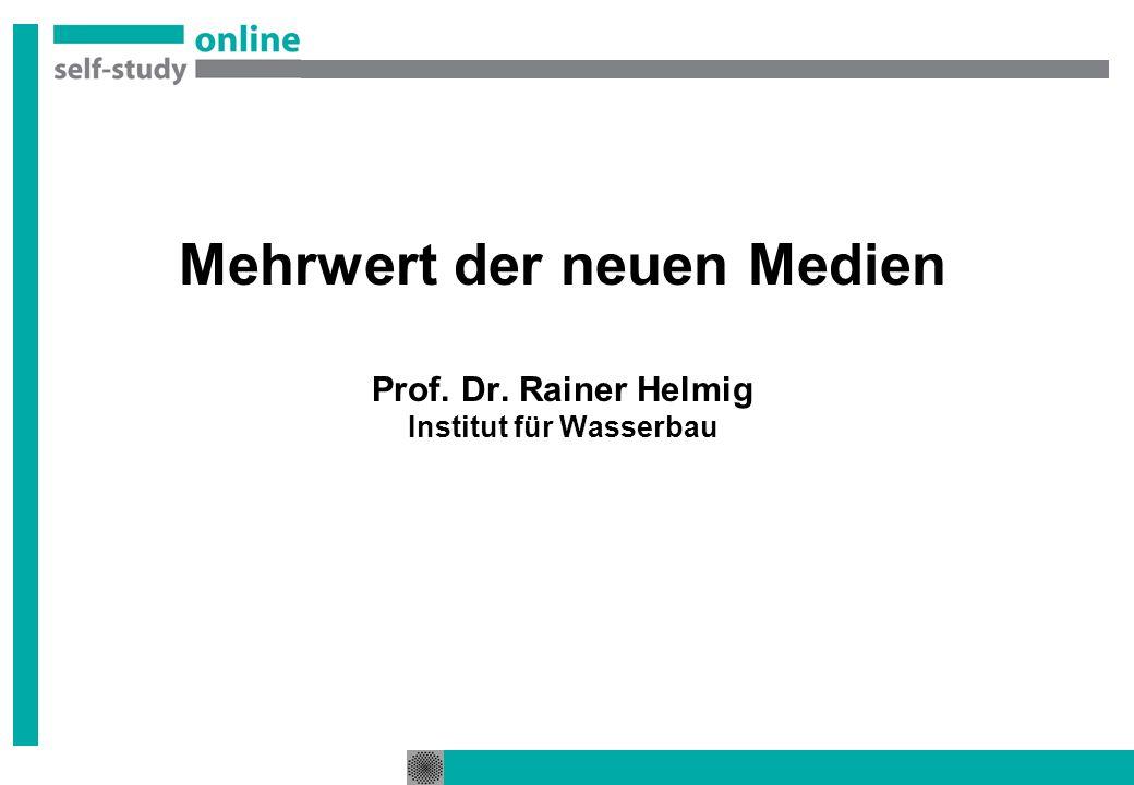 Mehrwert der neuen Medien Prof. Dr. Rainer Helmig Institut für Wasserbau
