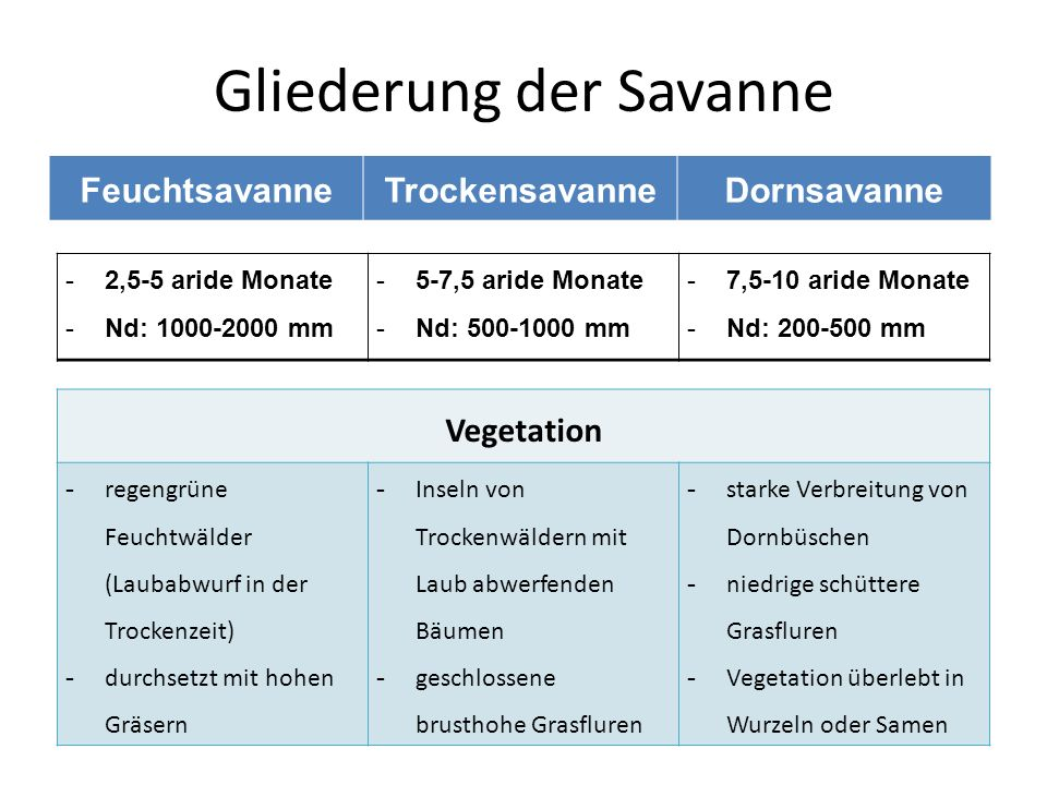 Gliederung der Savanne FeuchtsavanneTrockensavanneDornsavanne -2,5-5 aride Monate -Nd: 1000-2000 mm -5-7,5 aride Monate -Nd: 500-1000 mm -7,5-10 aride
