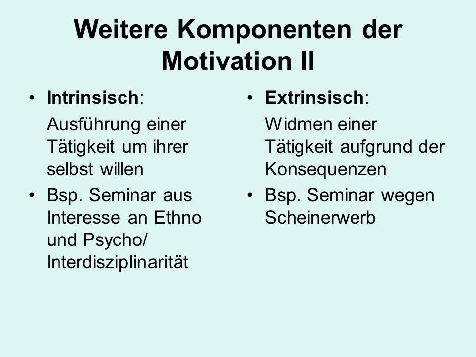 Weitere Komponenten der Motivation II Intrinsisch: Ausführung einer Tätigkeit um ihrer selbst willen Bsp. Seminar aus Interesse an Ethno und Psycho/ I