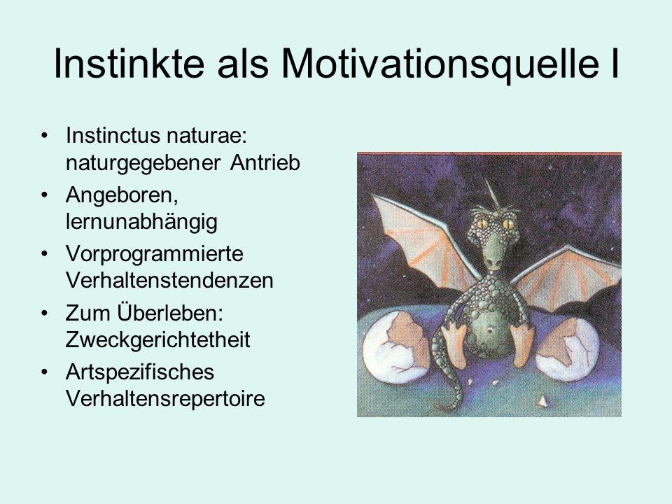 Instinkte als Motivationsquelle I Instinctus naturae: naturgegebener Antrieb Angeboren, lernunabhängig Vorprogrammierte Verhaltenstendenzen Zum Überleben: Zweckgerichtetheit Artspezifisches Verhaltensrepertoire