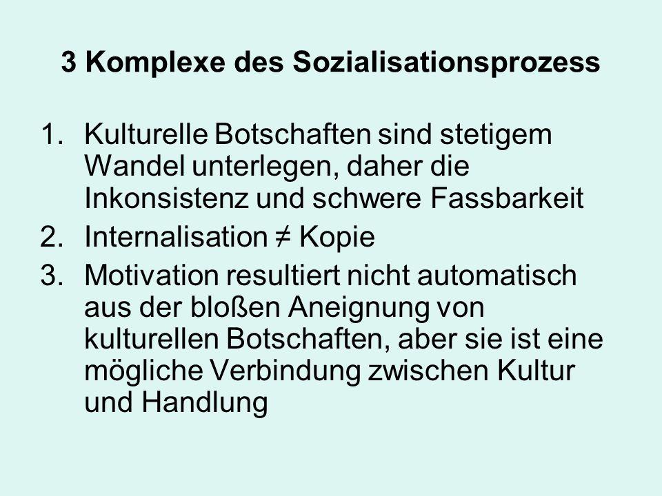 3 Komplexe des Sozialisationsprozess 1.Kulturelle Botschaften sind stetigem Wandel unterlegen, daher die Inkonsistenz und schwere Fassbarkeit 2.Intern