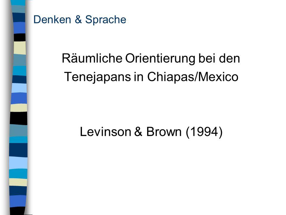 Denken & Sprache Räumliche Orientierung bei den Tenejapans in Chiapas/Mexico Levinson & Brown (1994)