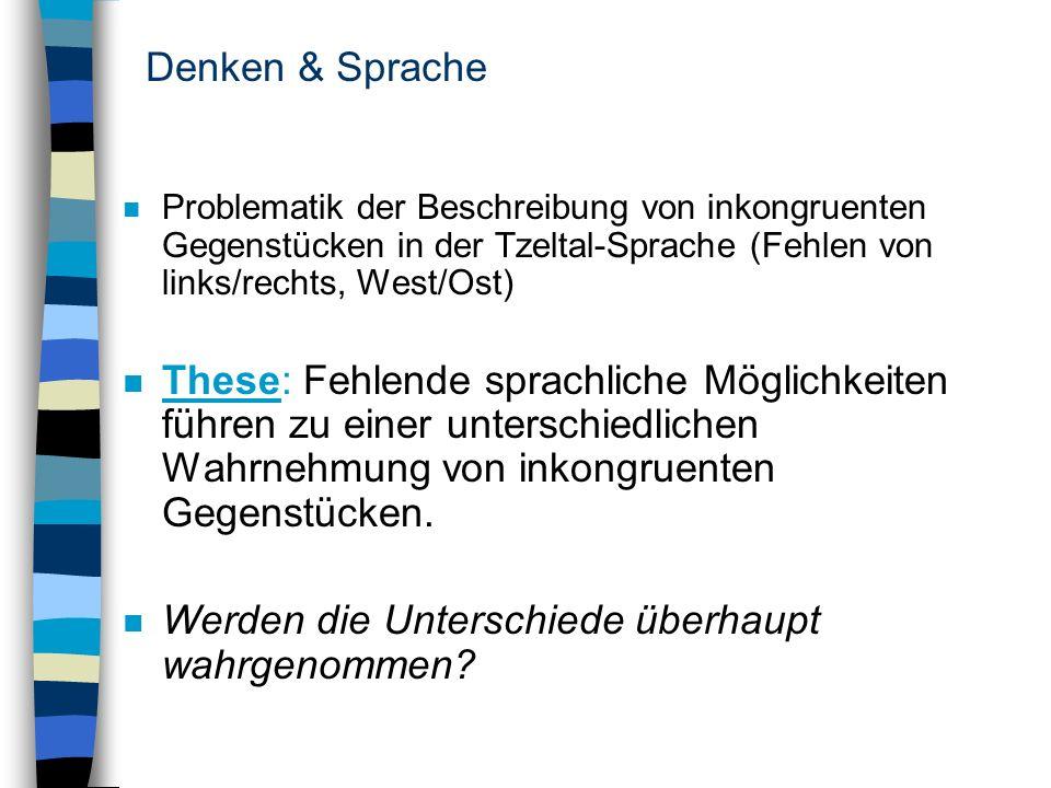 Denken & Sprache n Problematik der Beschreibung von inkongruenten Gegenstücken in der Tzeltal-Sprache (Fehlen von links/rechts, West/Ost) n These: Feh