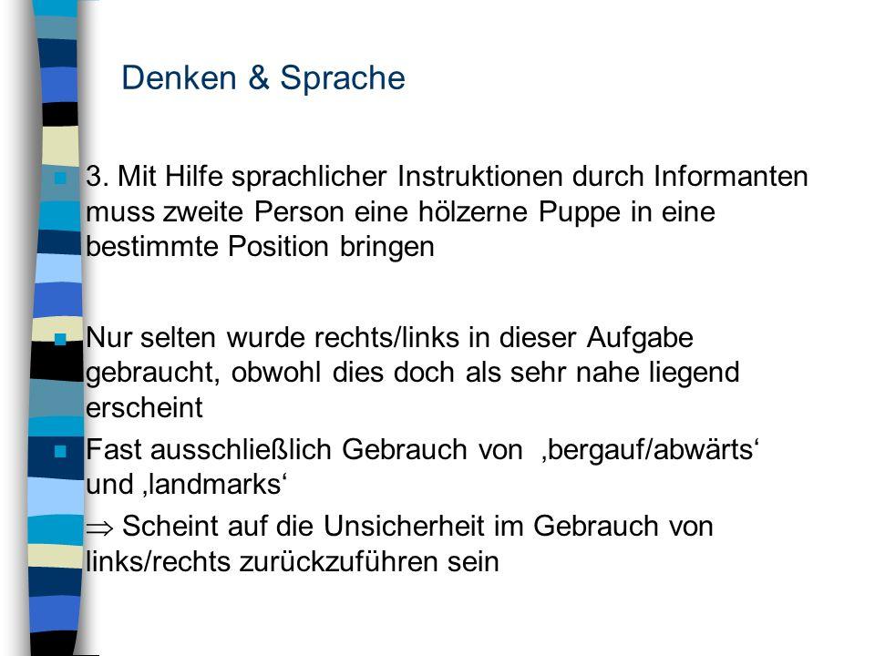 Denken & Sprache n 3. Mit Hilfe sprachlicher Instruktionen durch Informanten muss zweite Person eine hölzerne Puppe in eine bestimmte Position bringen