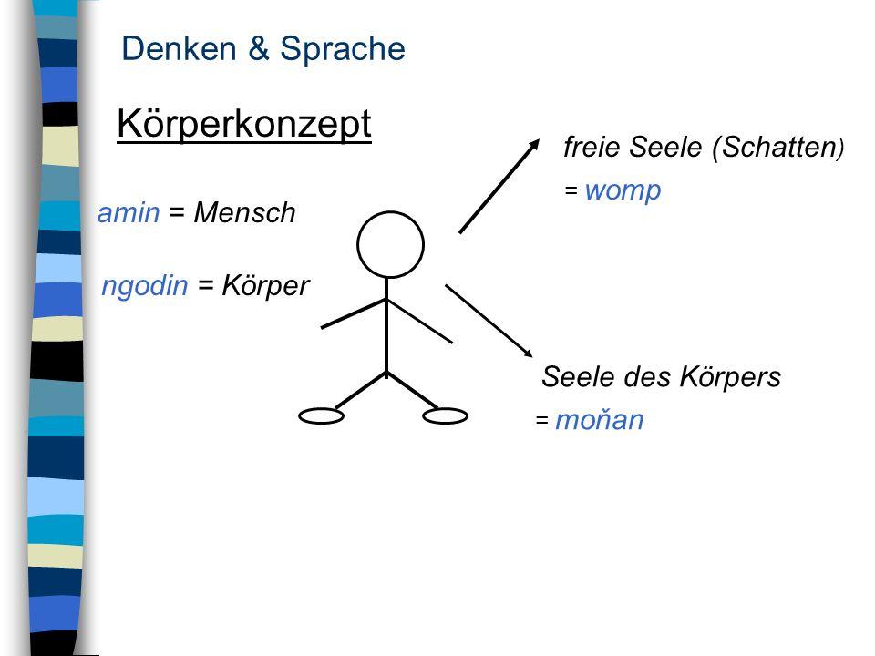 Denken & Sprache Körperkonzept amin = Mensch ngodin = Körper freie Seele (Schatten ) = womp Seele des Körpers = moňan