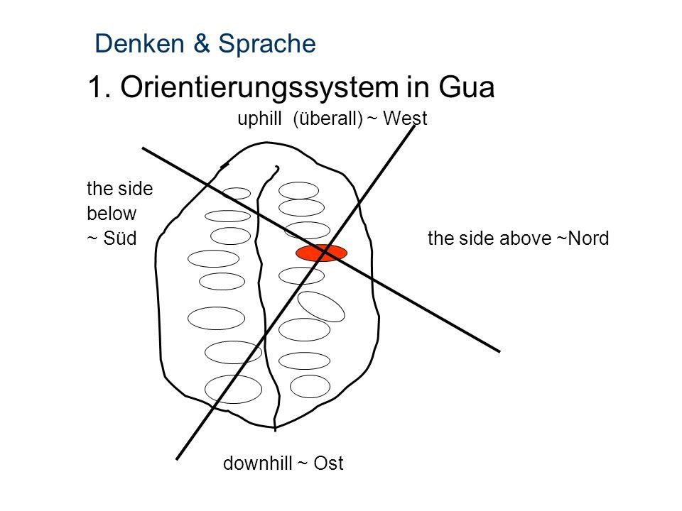 Denken & Sprache 1. Orientierungssystem in Gua uphill (überall) ~ West the side below ~ Südthe side above ~Nord downhill ~ Ost