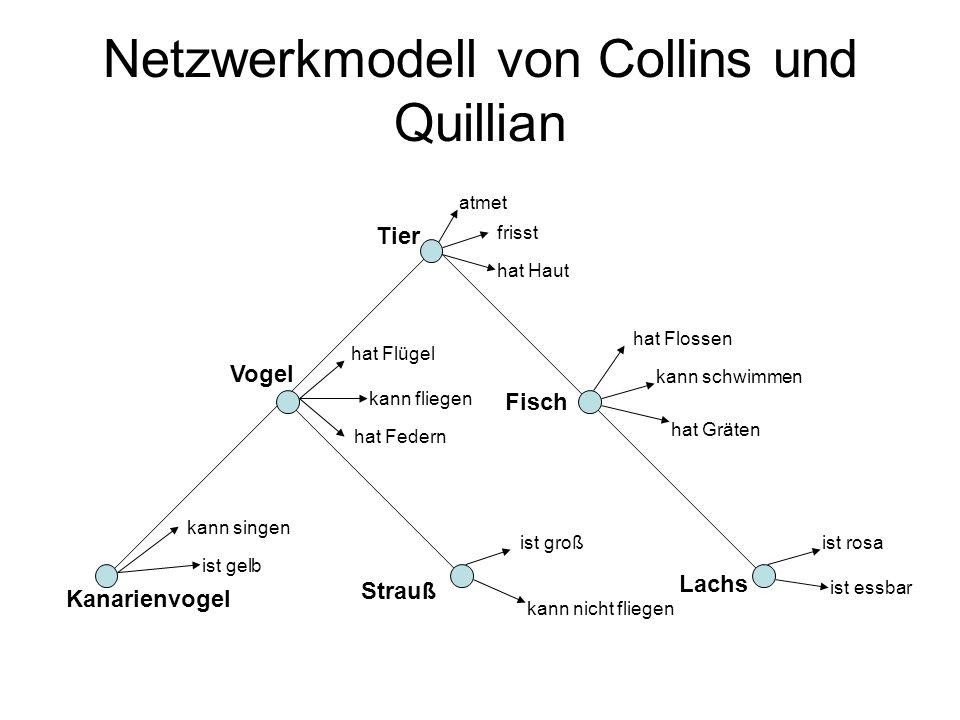Netzwerkmodell von Collins und Quillian Tier Strauß Kanarienvogel Vogel Fisch Lachs atmet frisst hat Haut hat Flossen kann schwimmen hat Gräten ist ro