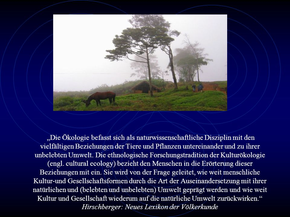 Die Ökologie befasst sich als naturwissenschaftliche Disziplin mit den vielfältigen Beziehungen der Tiere und Pflanzen untereinander und zu ihrer unbelebten Umwelt.